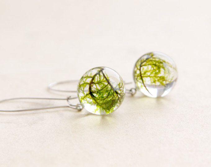 Pendientes verde musgo | Ronda aretes de resina | Pendientes de la naturaleza de la resina | Musgo real joyas de la naturaleza | Joyas de resina de naturaleza | Pendientes redondos musgo