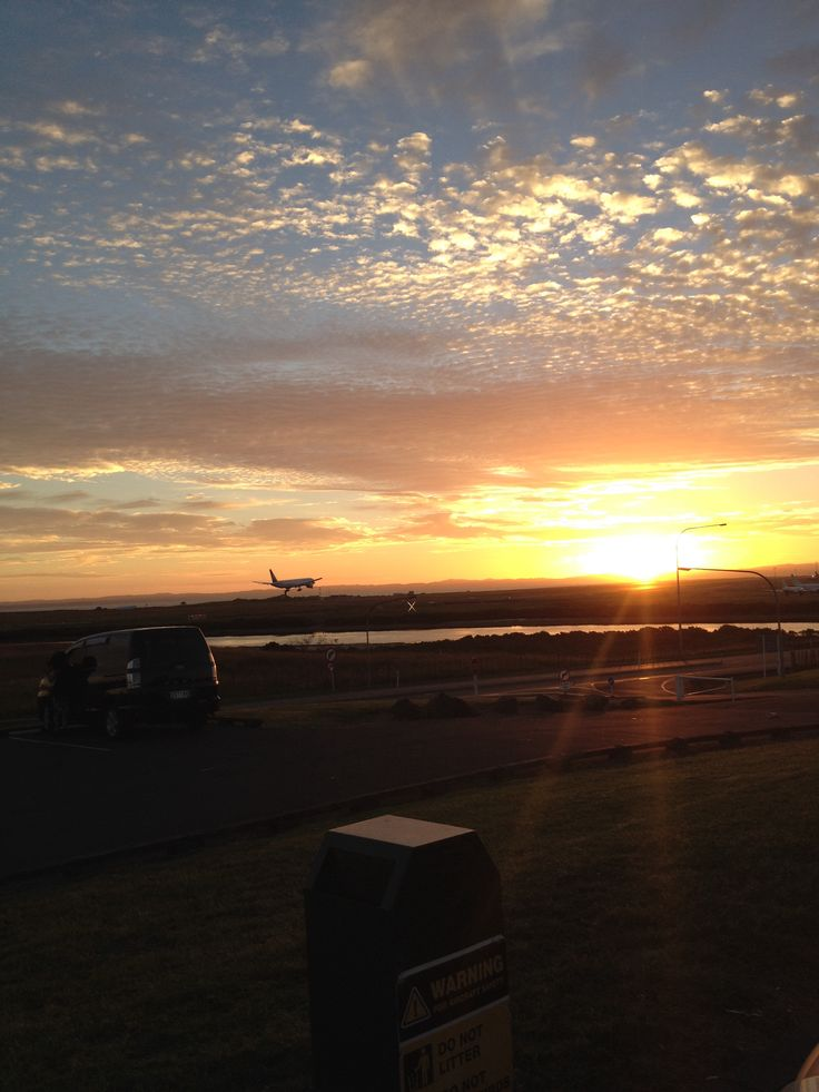 View area auckland airport