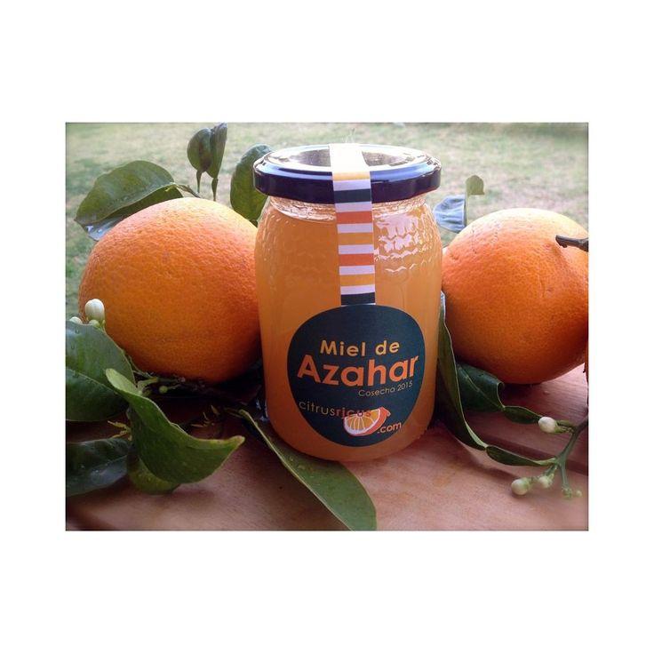 Orangenblütenhonig 500 g -   Dieser naturreine Orangenblütenhonig wird keinen Verfeinerungsprozessen unterzogen, er wird nur gefiltert, um eventuelle Unreinheiten zu entfernen. Er wird weder pasteurisiert noch mit anderen Produkten gemischt. Der Honig unserer Orangenbäume zeichnet sich durch ein mildes, zartes Blütenaroma aus. Dieser Honig ist so, als ob Sie ihn selbst den Waben entnommen hätten!