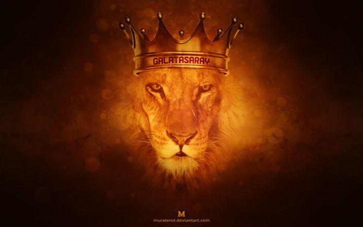 Galatasaray King Lion Wallpaper