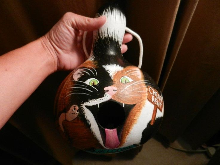 Painted Gourds Ideas | The first cat gourd birdhouse I ...