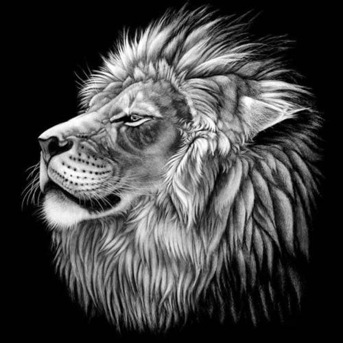 Tiger Head DIY Diamond Painting