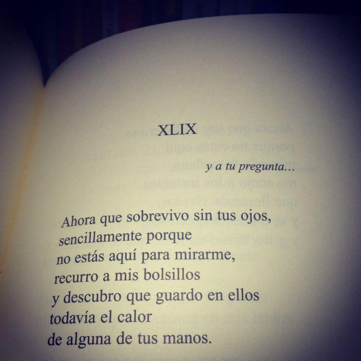 Y Amarte Sin Saber. Pepe Viyuela.  Premio Internacional de Poesía Margarita Hierro 2007.