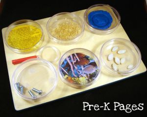 DIY Science Magnifying Board for Preschool and Kindergarten