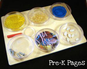 DIY Science Magnifying Board for Science Center in Preschool and Kindergarten