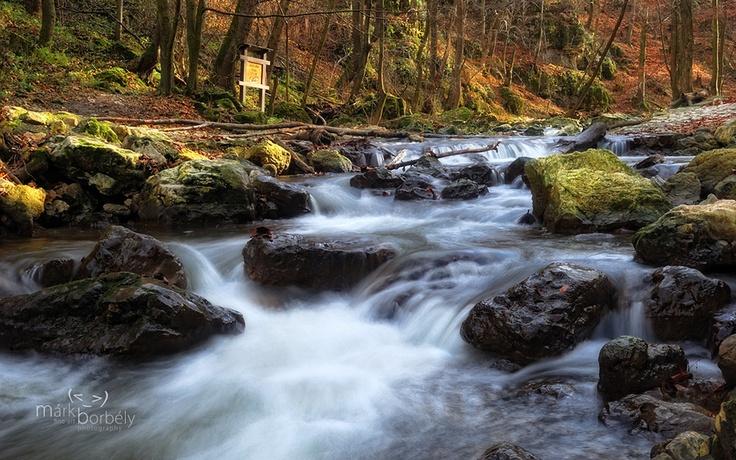 Cuha: The Brook of Dreams