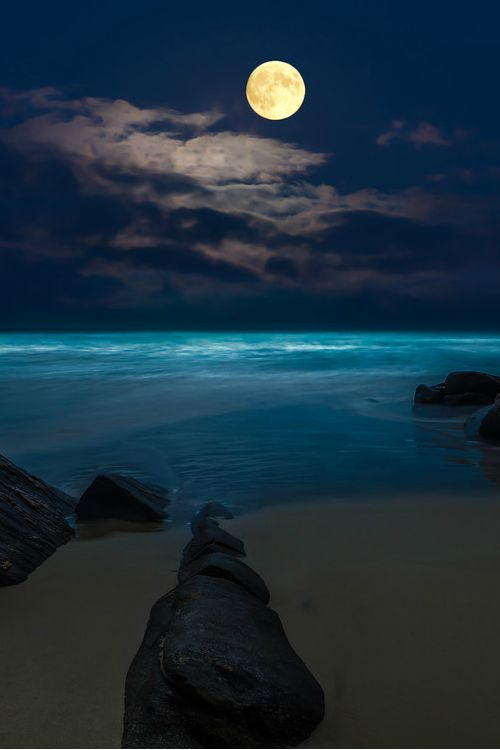 17 best ideas about moon beach on pinterest | super moon, moon, Hause ideen