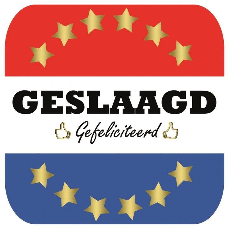 Bierviltjes geslaagd, vierkant. Deze vierkante viltjes zijn aan beide kanten bedrukt met de Nederlandse vlag en de tekst: Geslaagd, gefeliciteerd! Inhoud: 15 stuks. Formaat per stuk: 9,5 x 9,5 cm.