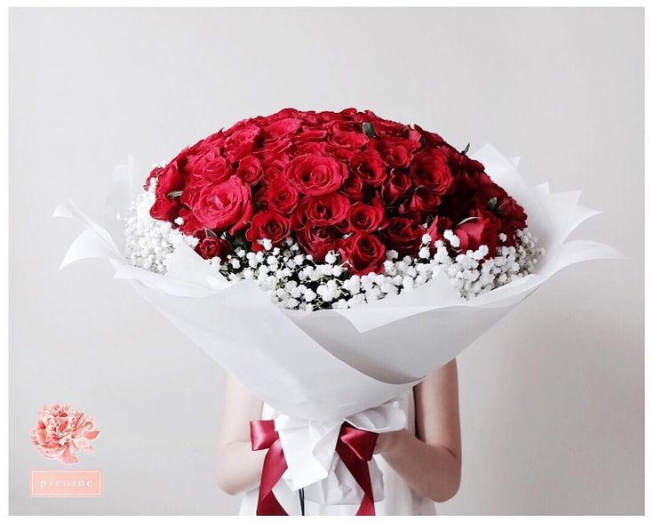 """100th • Pivoine's 100 rose bouquet @itspivoine WA : +62 898 9090 778 (NO CALL please) Line : tashavania08  #itspivoinebouquet #pivoineflowerbox #florist…"""