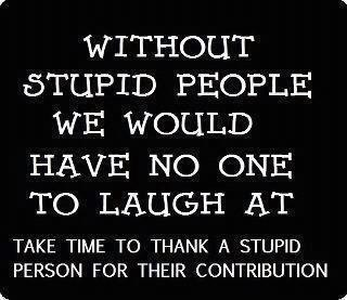 : Laughing, Quotes, Sotrue, Funny Stuff, So True, Humor, Things, Stupid People, Stupid Personalized