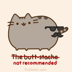 Ok, I had to pin this because 1) I looove Pusheen 2) Mustaches are amazing and 3) I...I... I just laughed SOOOO hard for no reason. Lol I don't know why. ;)