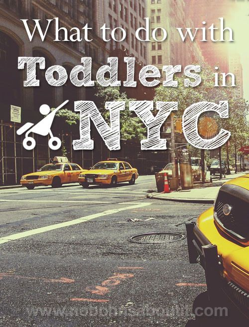 What to do with Toddlers in NYC - great for locals and visitors