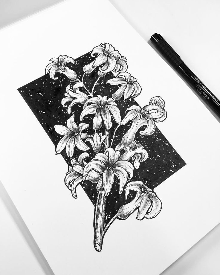 """145 Likes, 10 Comments - · samreen · (@samreenart) on Instagram: """"✨ Inktober Day 2 ✨ I kinda suck at drawing flowers so what could be a better opportunity than this…"""""""