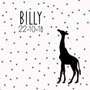 Geboortekaartje JippieJippie zwart-wit hartjes giraf 971