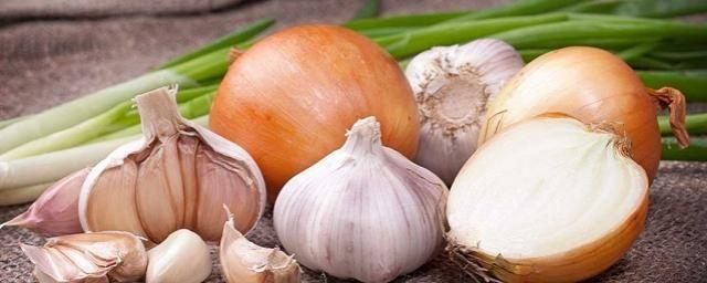 Ученые рассказали о полезных свойствах чеснока и лука