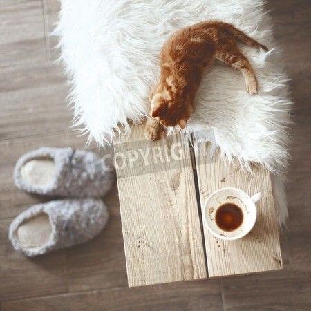 静物詳細、素朴なベンチは、コーヒー カップのトップ ビュー ポイント