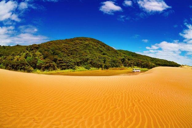 Partir en Nouvelle Zélande pour sa lune de miel, visite du désert