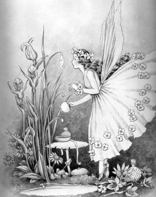 Raindrops Are Fairies Mirrors?