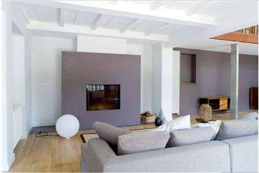 Dans ce salon design, la cheminée encadrée d'un panneau reprenant le gris soutenu du mur du fond, fait face à un canapé d'un gris pastel. Le...