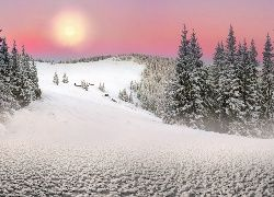 Zima, Drzewa, Słońce, Ukraina, Wzgórza