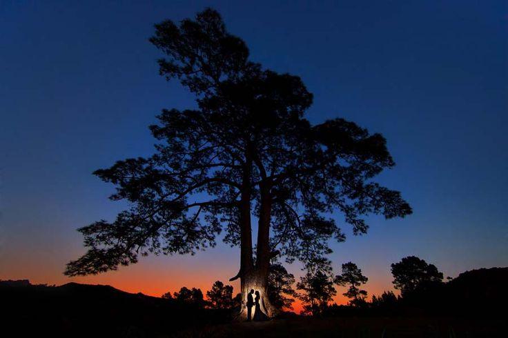 Mais uma foto premiada no Wedding Photography Select, do Reino Unido!