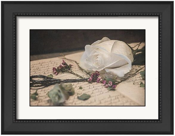Still Life 8496 Framed Print A Romantic, vintage feel to this contemporary still life image,