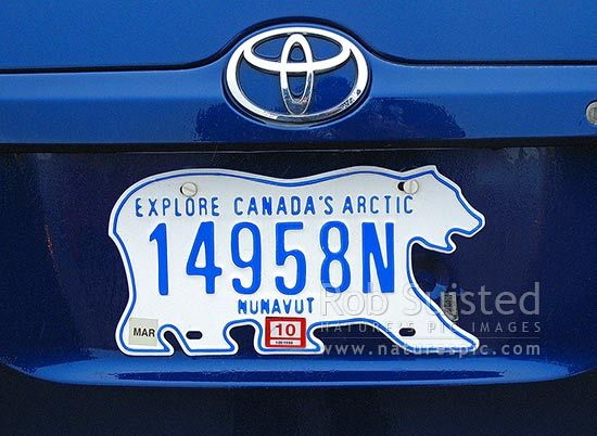 Polar Bear vehicle number plate for Nunavut. Apparently the most sort after and often stolen number plate for collectors, Nunavut, Canada.