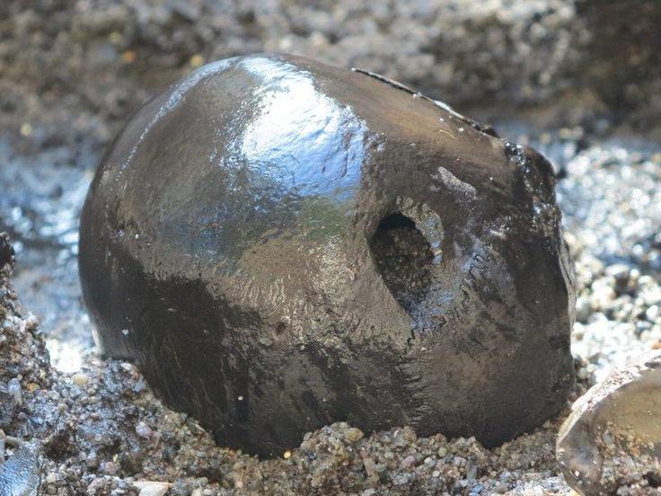 Macabre finds in the bog at Alken Enge, Denmark: Skeletal remains of hundreds of warriors unearthed