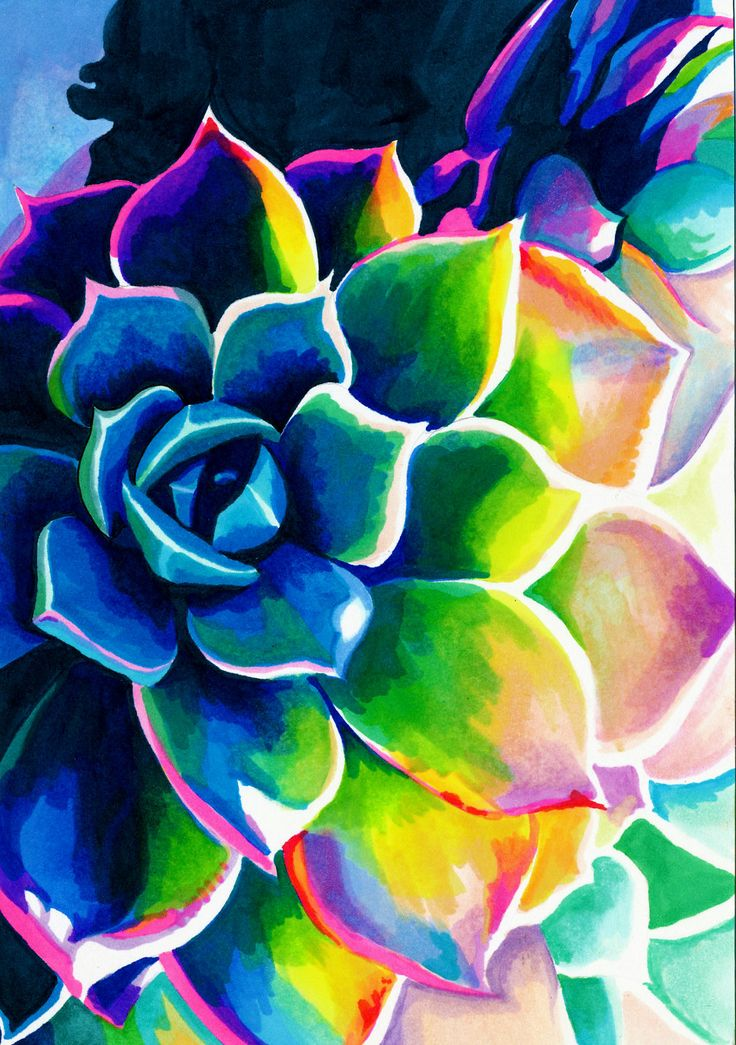 Supplication Succulent (Colorful Rainbow Spiritual Vivid Neon Plant Drawing with Copic Marker Ink on Bristol)