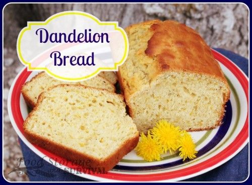 Got dandelions? Most of us do, so why not make something delicious with them, like this dandelion bread? A simple quick bread infused with dandelion petals sure to brighten any spring day.
