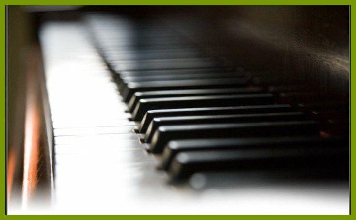#haresnapeschoolofmusic.co.u www.haresnapeschoolofmusic.co.u