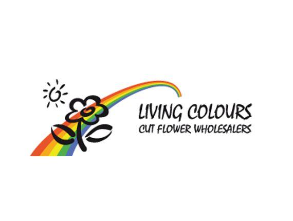 Living colors – Coaching / training online marketing - Brand You