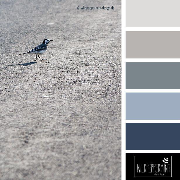 Kühle #Farbpalette, Kühle Sommerfarben, grau, blau, schwazr, Farbinspiration // © wildpeppermint-design.de ähnliche tolle Projekte und Ideen wie im Bild vorgestellt findest du auch in unserem Magazin