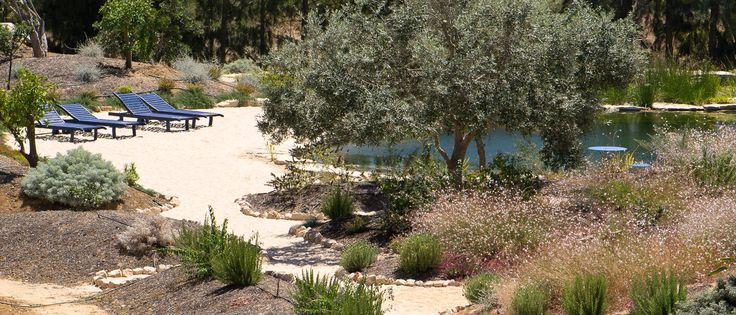 The natural lake and large gardens of Casa Flor de Sal attract many birds. Casa Flor de SaL: Holiday homes in sub-tropical paradise! Ria Formosa Natural Park, Olhão, Algarve, Portugal