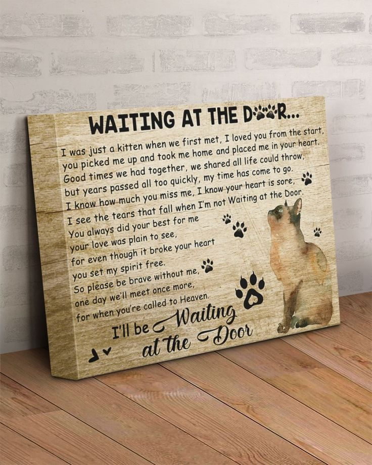 Cat Will Be Waiting At The Door Sympathy Poems Cat Loss Loss Grief Quotes
