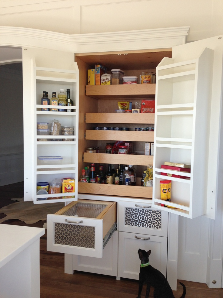 Kitchen: tricked out pantry complete with fruit-fly-proof fruit drawers, pull out shelves, bottle and bowl storage in bottom (and one curious cat)