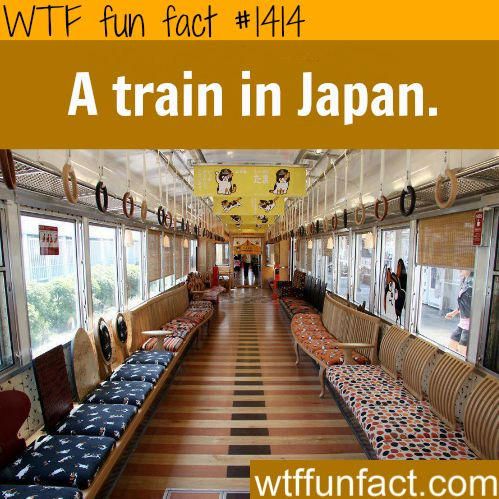 a train in japan WTF FUN FACTS HOME / SEE MORE tagged/ countries FACTS