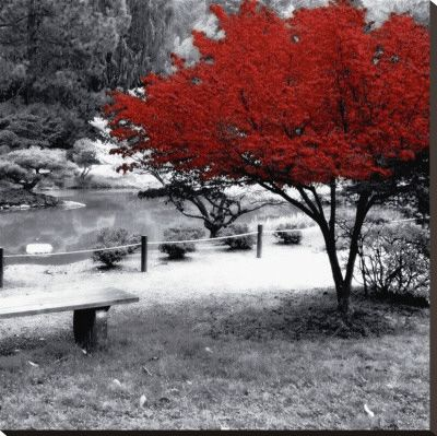 Quiet Moments Stretched Canvas Print at AllPosters.com