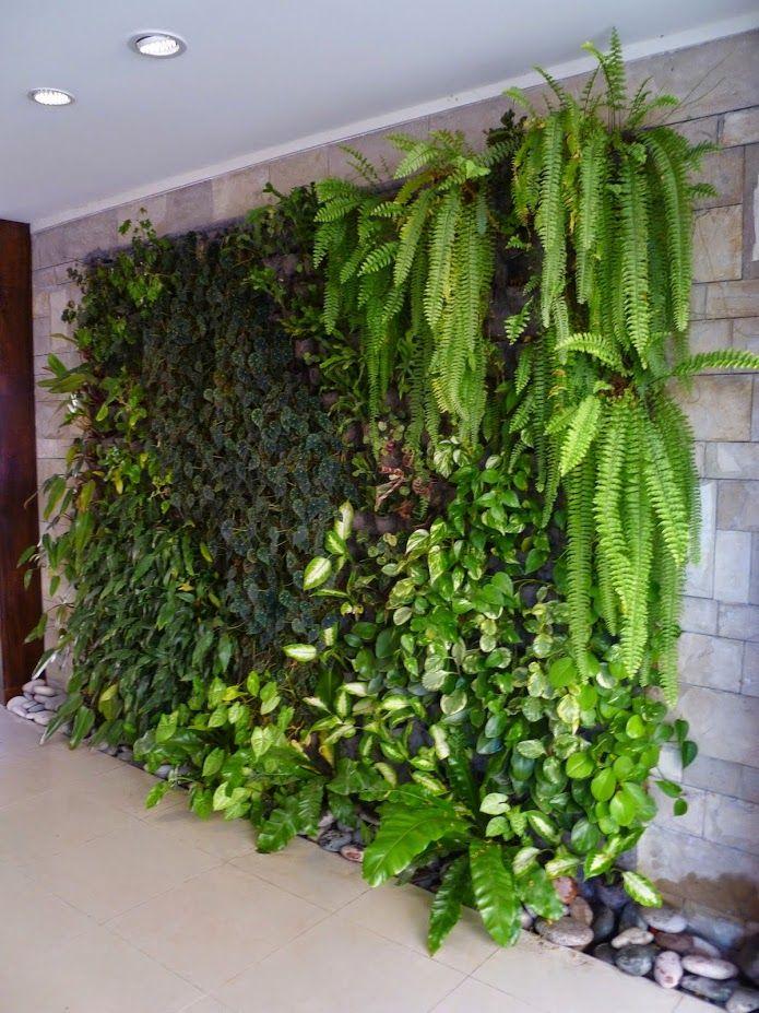 Muros verdes en Argentina