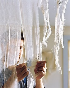 DIY creepy cheesecloth (much safer for pets than bags of fake cobwebs)