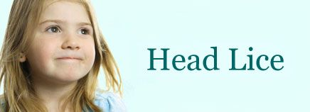 Head lice signs and symptoms