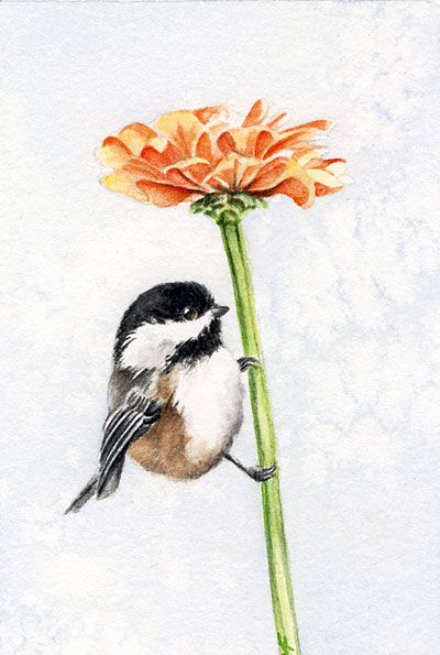 17. Really like the chickadee perched under a flower.  Not particularly attached to the zinnia though.
