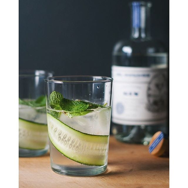 Gin And Tonic With Mint And Cucumber. Get this and 10+ more Gin recipes at https://feedfeed.info/gin