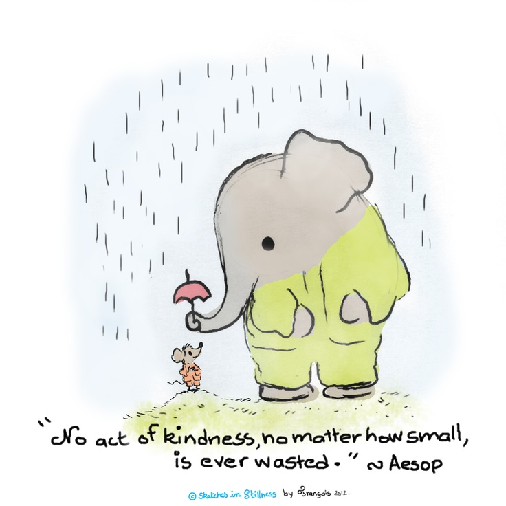 No act of kindness, no matter how small, is ever wasted ♥