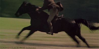 """sasscastah: """" """"I don't know about anyone else,but I believe a galloping horse is one of the most beautiful sights that can be seen by a human eye.I love the way their ears prick forward,then pin back against the neck.I love the way they flare their..."""