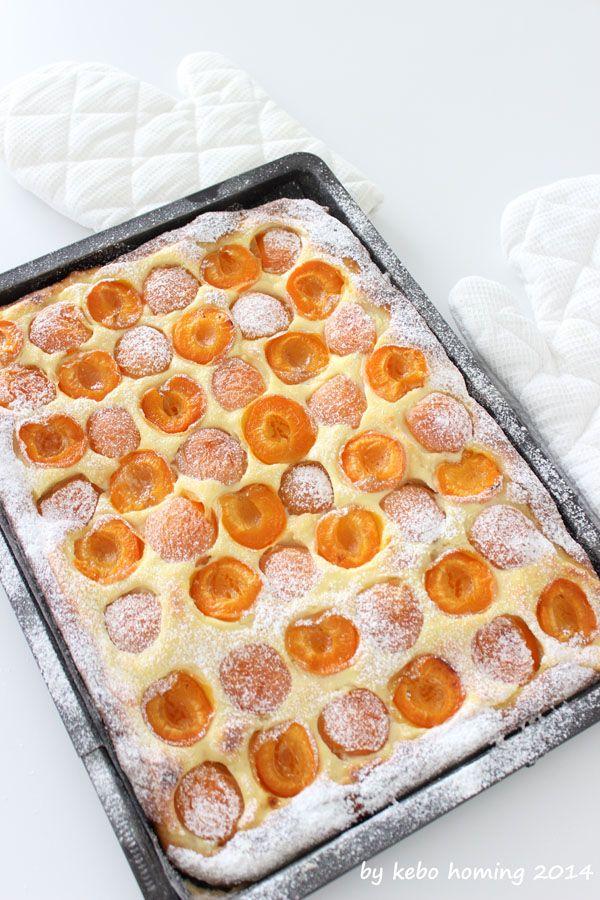 Aprikosenwähe mit Ricottaguss... flaumig, fruchtig, frisch... ein Sommerkuchen…