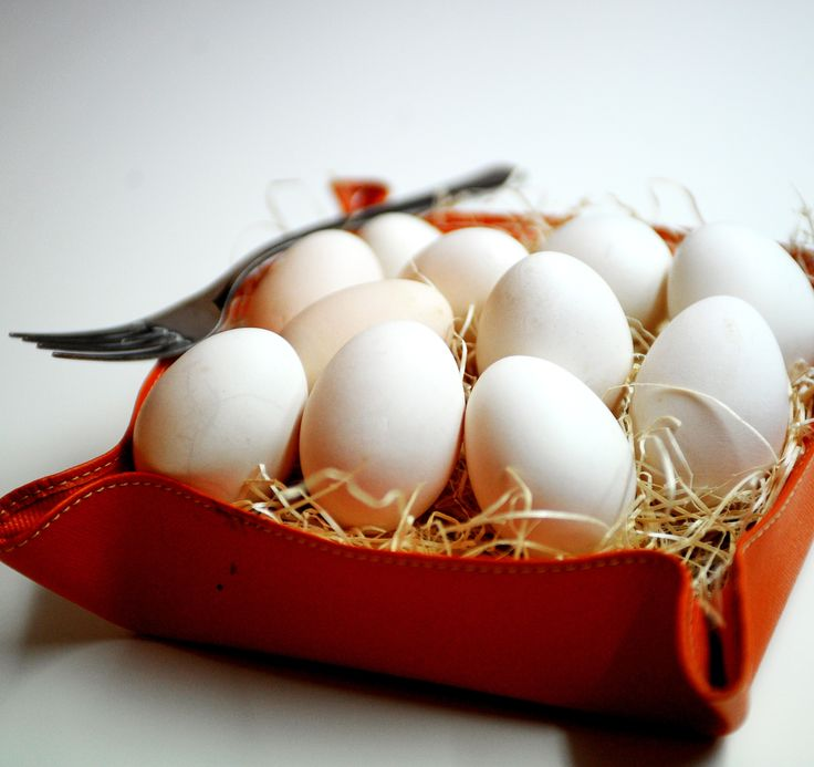 #Uova di gallina razza #Ancona #mangiaredadio
