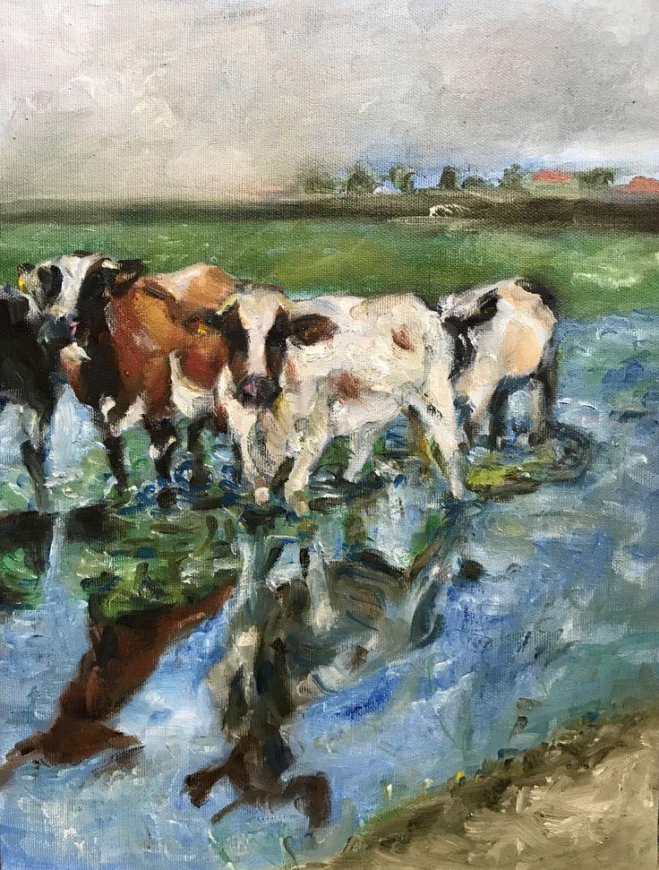 Koeien, olieverf op doek,