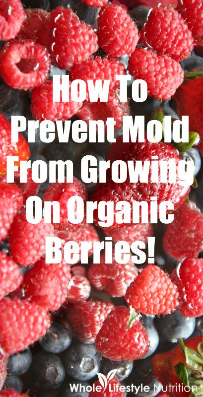 How To Prevent Mold From Growing On Organic Berries | WholeLifestyleNutrition.com #organic
