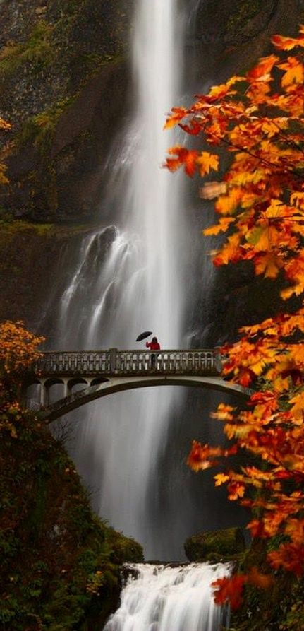 Multnomah Falls in the Columbia River Gorge near Portland, Oregon • photo: Steven Michael on 500px